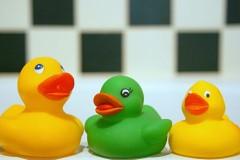 three rubber ducks on a bathtub rim